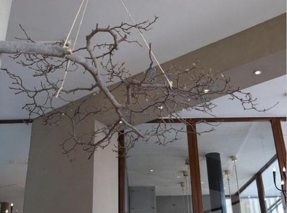 hanging branches ceiling