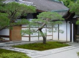 Courtyard with Trees