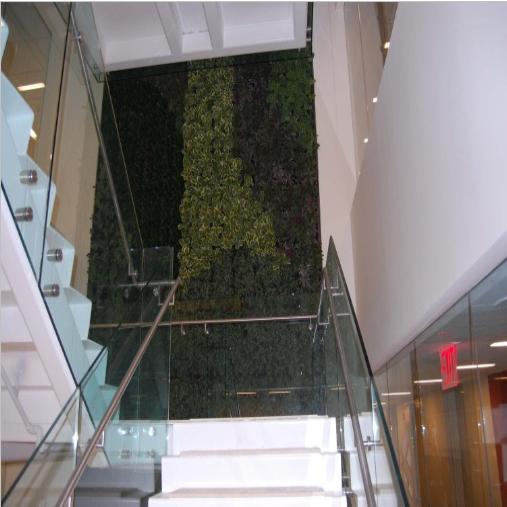 Living wall designs ideas green eco friendly walls india - Eco friendly walls for houses ...