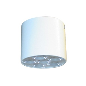 Surface Mounted Light ( Model 111AAY-6 )