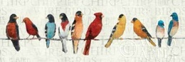 The Usual Suspects - Birds on a Wire Poster