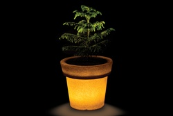 Eloisa 60 Illuminated Planter