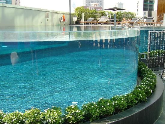 Acrylic Walls For Swimming Pools Acrylic Installers India