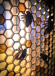 Honey Comb with Bee Sculpture – Metal Door