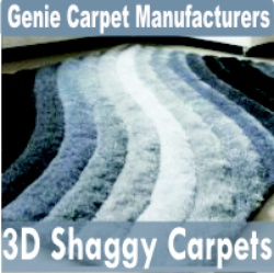3D Shaggy Carpets