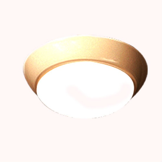Surface Mounted Light