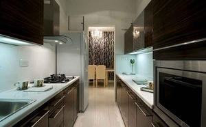 Modern Kitchen with Zebrano Wood Cabinets