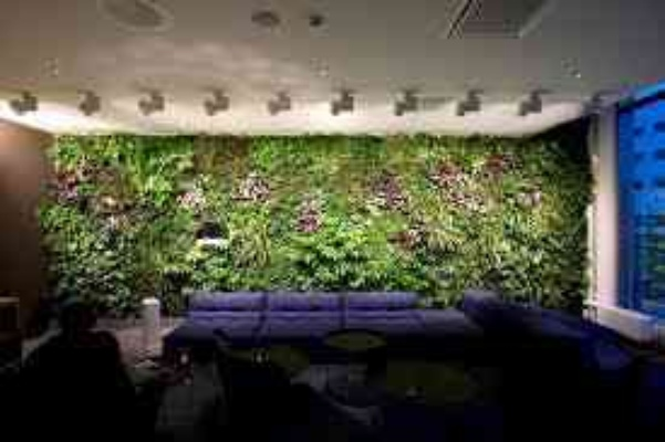 Vertical Garden Design in India Vertical Garden Designs Ideas
