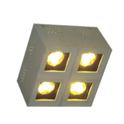 Surface Mounted Light ( Model 111AAZ-4L )